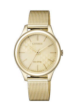 Citizen FE6093-87X